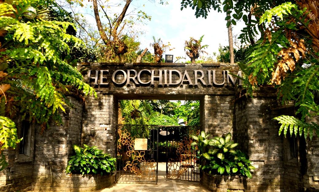 The Orchidarium, Manila.