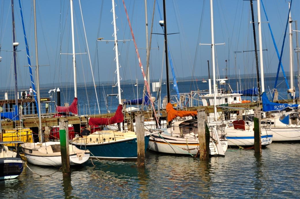 Westernport Bay, Mornington Peninsula, Australia